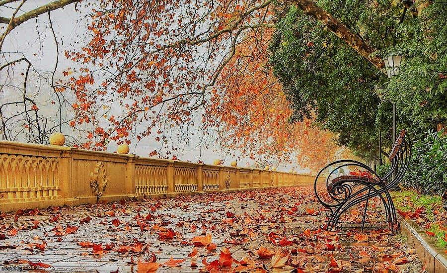 Отдых в Сочи в октябре